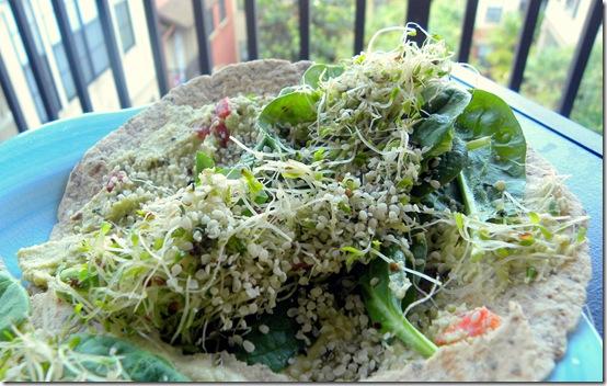 veggie and hummus wrap