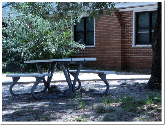 picnic  bench in the shade
